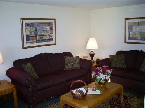 Cozy Couches and Table in Living Room